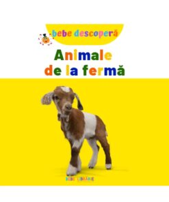 Animale de la ferma. Bebe descopera