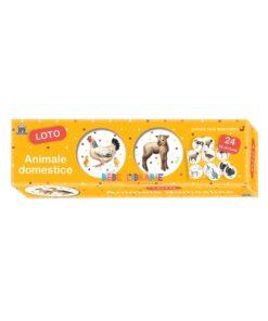 ANIMALE DOMESTICE - LOTO