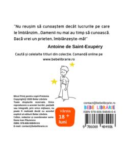 Micul Print pentru copii-Prietenia. Editie cartonata