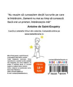 Micul print pentru copii-Prietenia